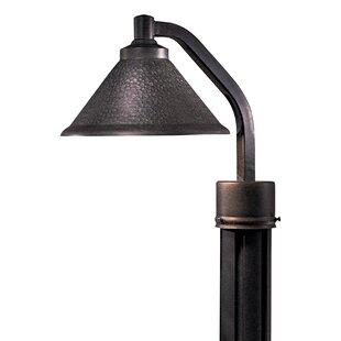 Read Reviews Michaud Outdoor 1-Light Lantern Head By Latitude Run