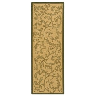 Beasley All Over Ivy Indoor/Outdoor Area Rug
