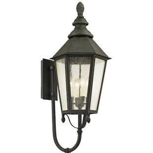 Aaryahi 4-Light Outdoor Sconce