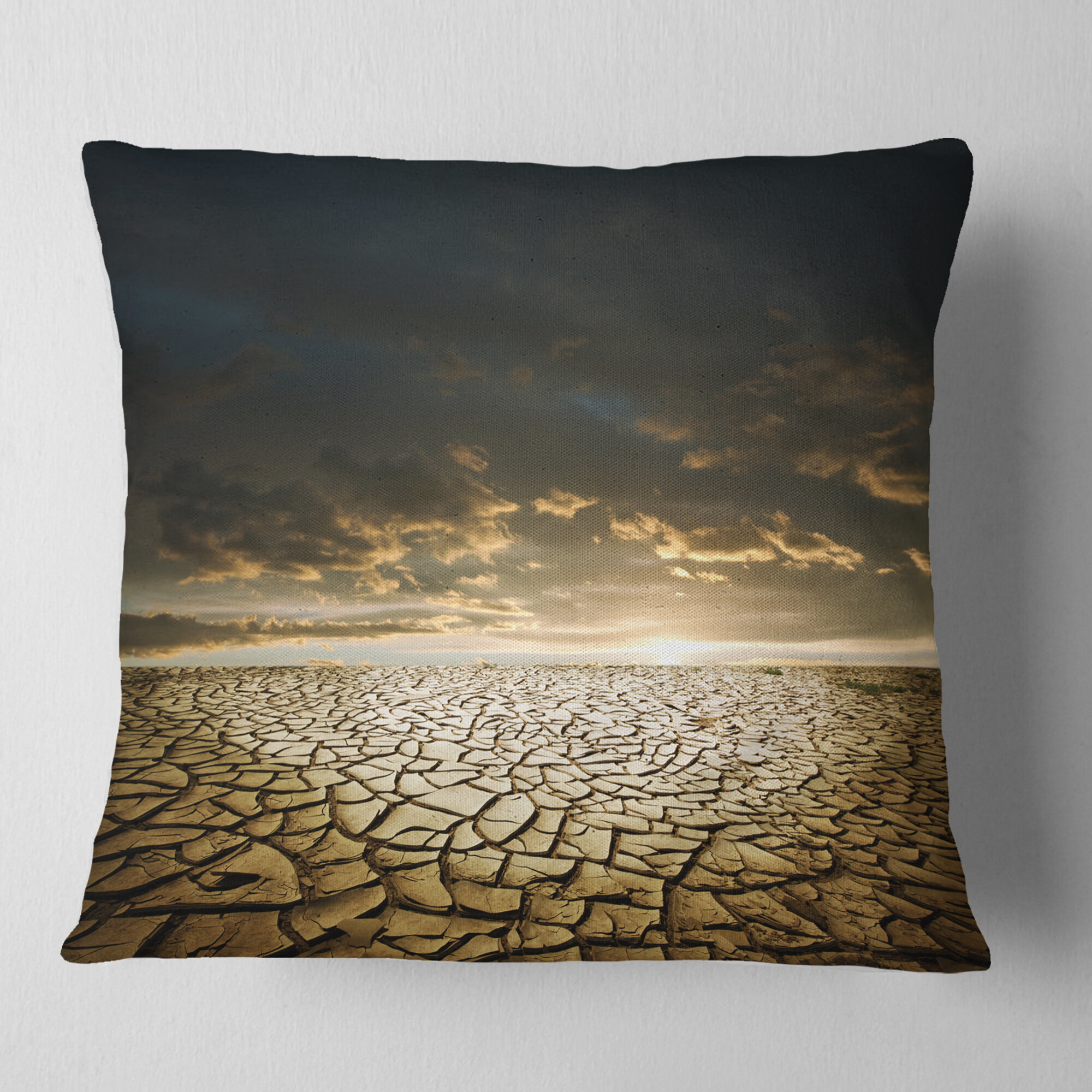 East Urban Home Drought Land Under Cloudy Skies Landscape Printed Pillow Wayfair