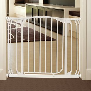 Pet Dog Gates You Ll Love Wayfair