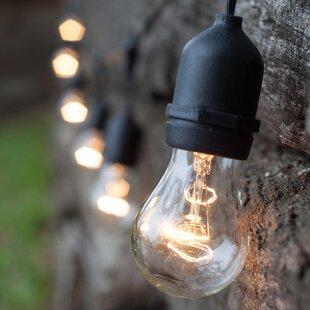 Compare & Buy 15-Light Globe String Lights By Wintergreen Lighting