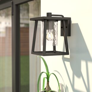 Bissonnette Outdoor Wall Lantern