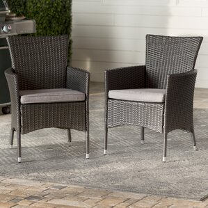 Mcnealy Patio Dining Chair With Cushion Set Of 2