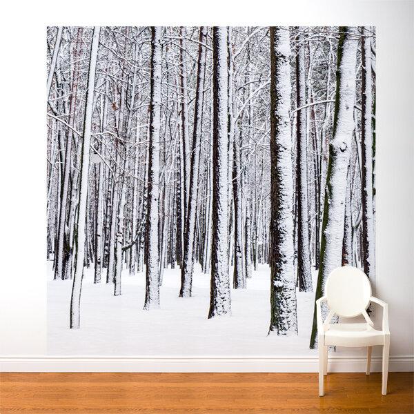 Ebern Designs Nordham White Forest Wall Mural Wayfair