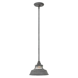 Fifine 1-Light Outdoor Pendant