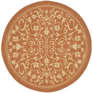 Bexton Persian Terracotta/Natural Indoor/Outdoor Area Rug by Alcott Hill