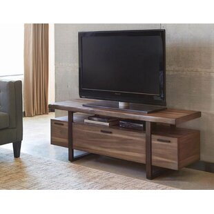 Top Reviews Louvenia TV Stand for TVs up to 60 by Three Posts Reviews (2019) & Buyer's Guide