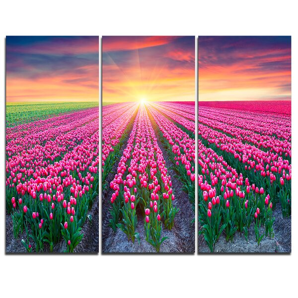 Designart Blooming Tulips At Sunrise 3 Piece Graphic Art On Wrapped Canvas Set Wayfair