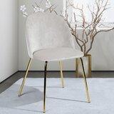 Darvin Velvet Upholstered Side Chair (Set of 2) by Mercer41