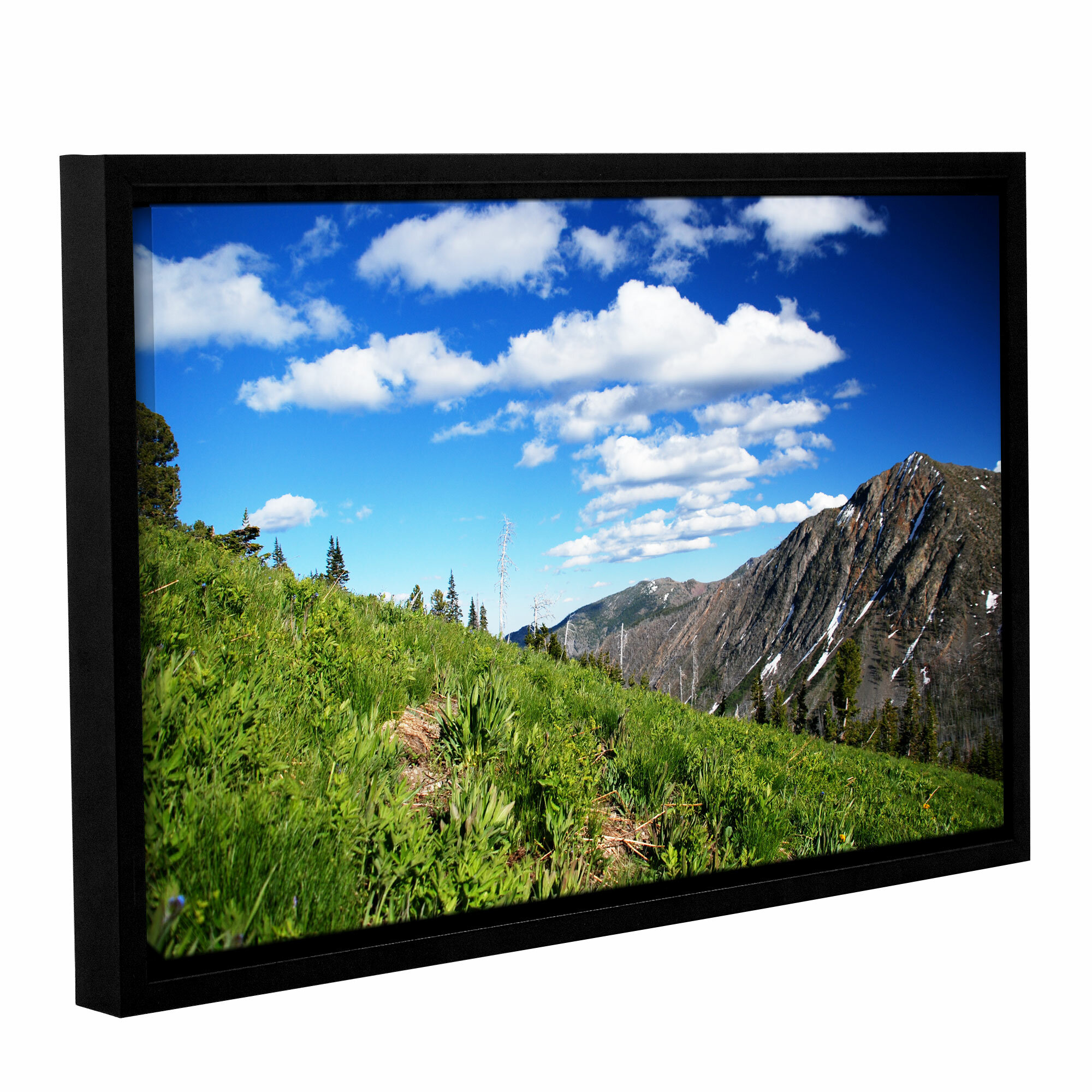 Artwall Mountain Meadow By Dan Wilson Framed Photographic Print On Wrapped Canvas Wayfair