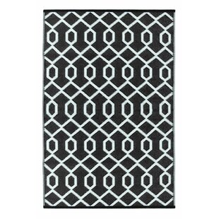 Lightweight Reversible Black White Indoor Outdoor Area Rug