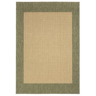 Checkered Green/Brown Rug by Hazelwood Home