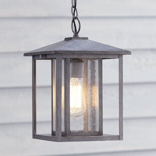 Calisto 1-Light Outdoor Hanging Lantern