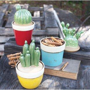 Cactus 3 Piece Kitchen Canister Set