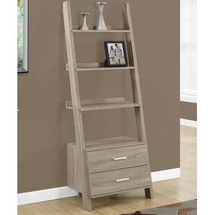 Hewitt Ladder Bookcase by Breakwater Bay