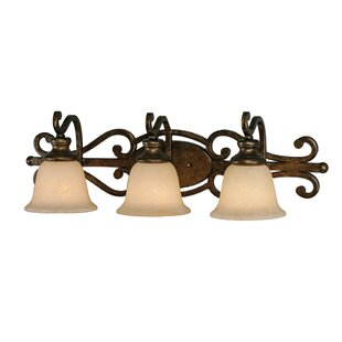 Order Elburn 3-Light Vanity Light By Fleur De Lis Living