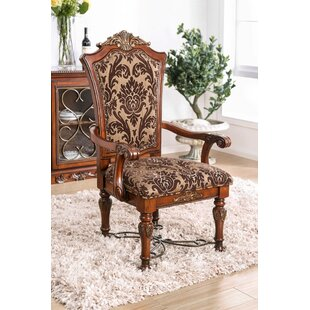Alexandro Upholstered Dining Chair (Set Of 2) by Astoria Grand Looking for