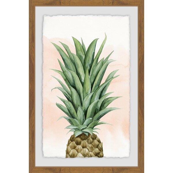 Bay Isle Home Pineapple On Coral Ii Framed Graphic Art Print Wayfair