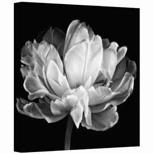 Modern wall art canvas art allmodern tulipa double black white by cora niele photo graphic print on canvas in black mightylinksfo