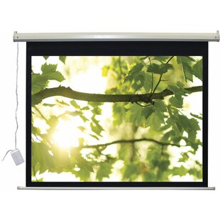 Great choice Lectro IR QM A Series White Electric Projection Screen By Vutec