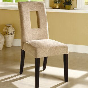Catina Side Chair (Set of 2) Hokku Designs