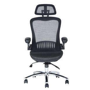 Hawks Mesh Task Chair