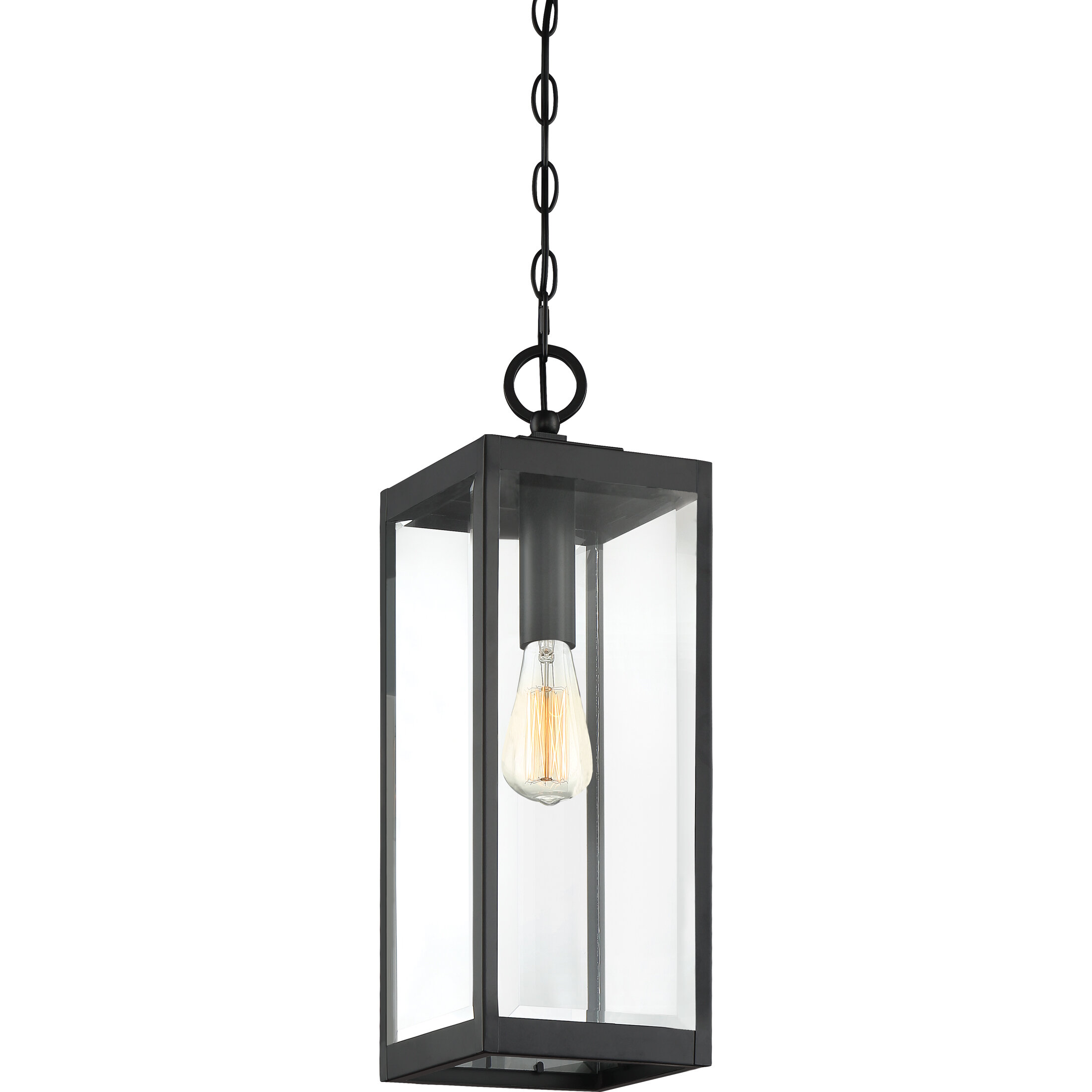 Bulb 20 75 H Outdoor Hanging Lantern