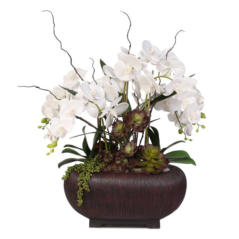 floral home decor orchid floral design wayfair.htm world menagerie phalaenopsis orchid floral arrangement in pot  phalaenopsis orchid floral arrangement