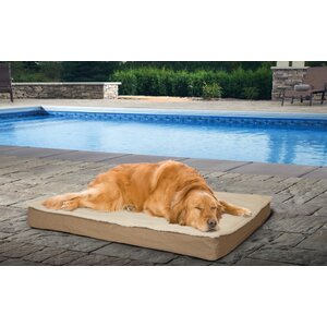 Etta Deluxe Outdoor Orthopedic Pet Mat/Pad