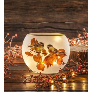 Affordable Price Chickadee Glass Accent Night Light ByPlow & Hearth