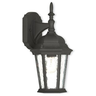 Busse 1-Light Outdoor Wall Lantern By Darby Home Co Outdoor Lighting
