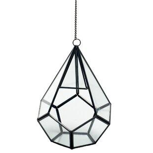 Geometric Terrarium Bulk Wayfair