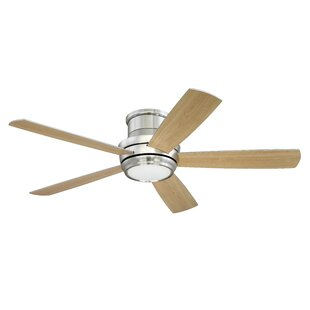 Modern flush mount ceiling fans allmodern save to idea board mozeypictures Choice Image