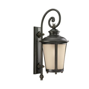 Maria 1-Light Outdoor Wall Lantern