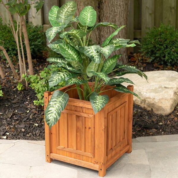 Leisure Season Decorative Planters Cypress Planter Box Wayfair