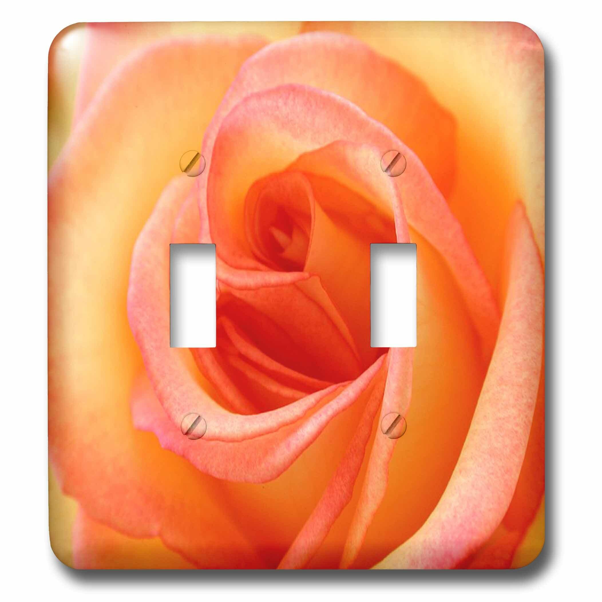 3drose Peach Rose 2 Gang Toggle Light Switch Wall Plate Wayfair
