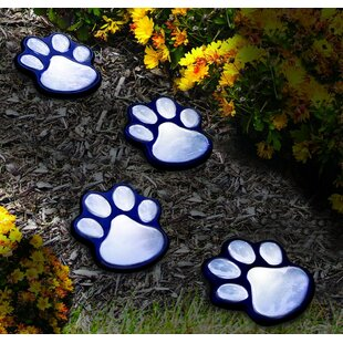 Paw Prints 4 Light Pathway Light