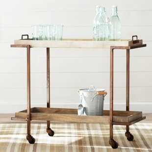 Hailee Bar Cart by Laurel Foundry Modern Farmhouse