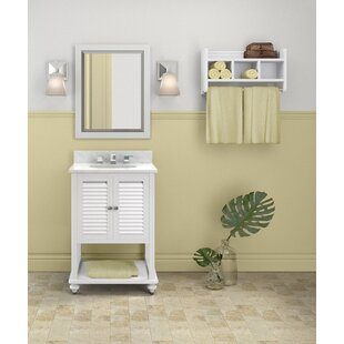Brigg 25 Single Bathroom Vanity with Mirror and Shelf By Darby Home Co