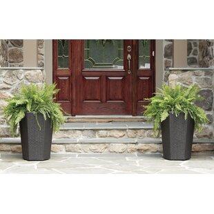 Mccarroll Resin Pot Planter  sc 1 st  Wayfair.com & Novelty Planter Pots You\u0027ll Love   Wayfair