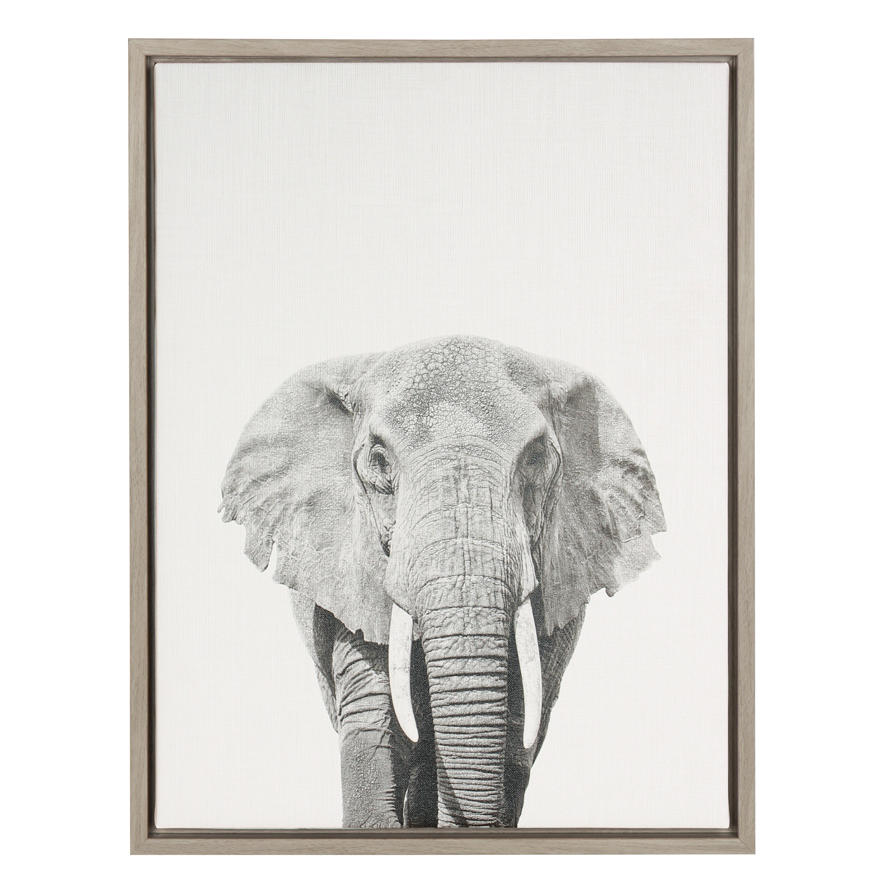 Elephant Black and White Portrait\' Framed Photographic Print on ...