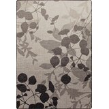 Silhouette Home Rugs Wayfair Ca