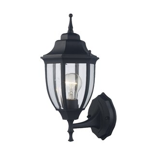 Camelot 1-Light Outdoor Wall Lantern