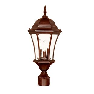 Great Price Francesca Lane Outdoor 3-Light Lantern Head By Alcott Hill