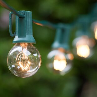 50-Light Globe String Lights By Wintergreen Lighting Outdoor Lighting