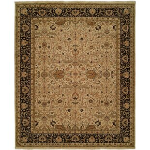 Searching for Diphu Hand-Knotted Ivory/Black Area Rug ByMeridian Rugmakers