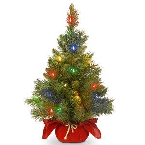 Tabletop Christmas Trees You'll Love   Wayfair
