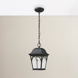 Shop For Grogan 1-Light Outdoor Lantern By Alcott Hill