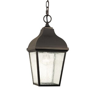 Comparison Graceton 1-Light Outdoor Hanging Lantern By Alcott Hill